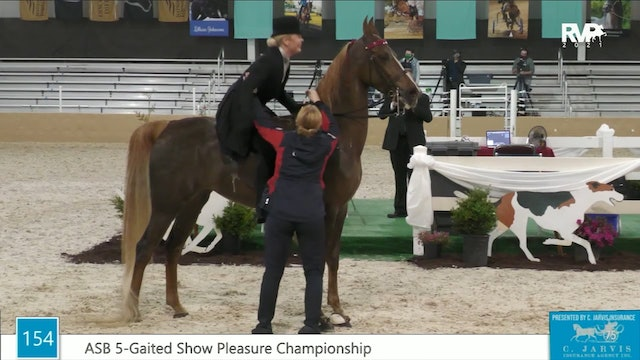 BS21 - Class 154 - ASB Five Gaited Show Pleasure Championship