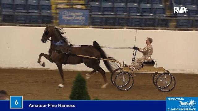 BB16 - Amateur Fine Harness