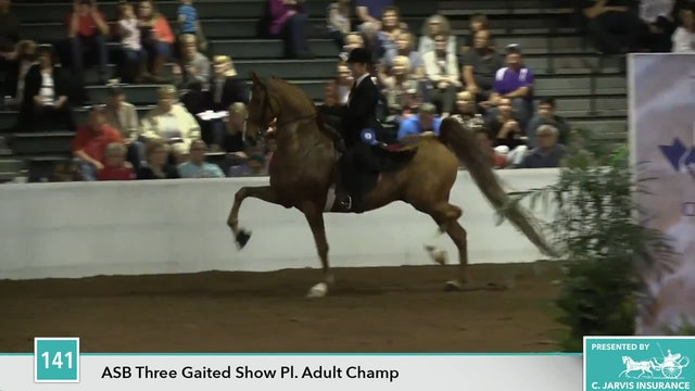 GASP17 - Happy Boy - Championship