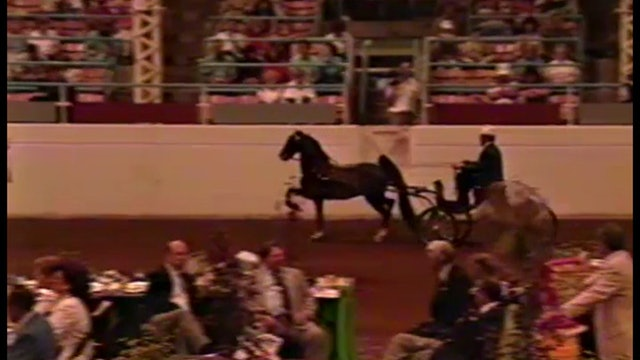 1990 Illinois State Fair - Fine Harness - First Choice