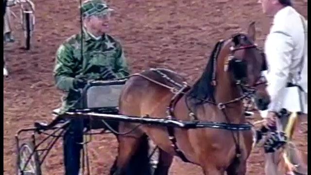 1990 Illinois State Fair - Roadster Pony Medallion