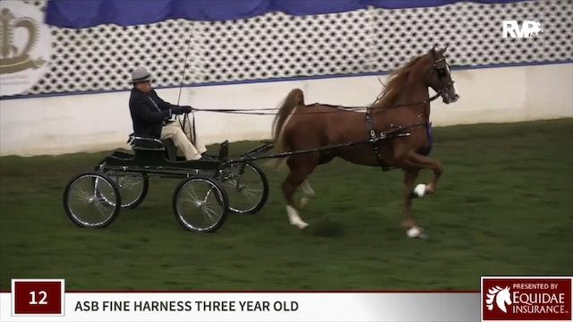 Reedann's Spring Heir - Harness