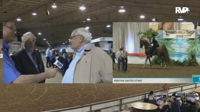 2020 Gasparilla Charity Horse Show - Tuesday Evening