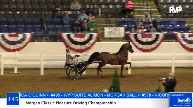 2020 BB - Class 145 Morgan Classic Pleasure Driving Championship