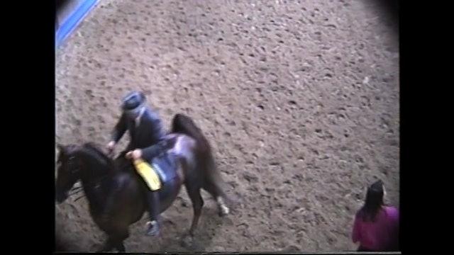 Des Moines Spring Horse Show 1995 - Novice 5 Gaited - Callaway's Hopscotch