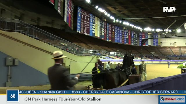 2019 Morgan Grand National - Coliseum...