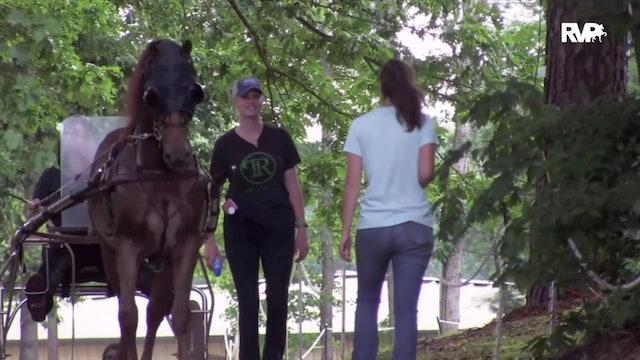 2020 Bridlespur Horse Show - Academy