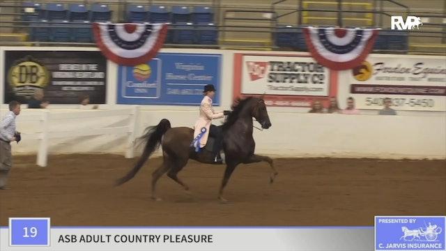 2019 American Saddlebred Horse Association of Virginia - Friday Morning