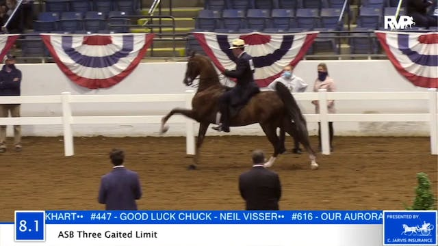 2020 BB - Class 8.1 ASB Three Gaited ...