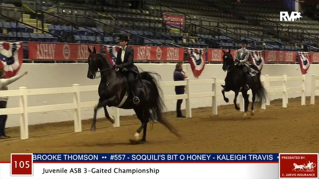 ASHAV 2020 - Class 105 ASB Juvenile Three Gaited Stake