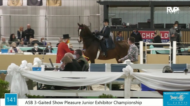BS21 - Class 141 - ASB Three Gaited Show Pleasure Junior Exhibitor Championship