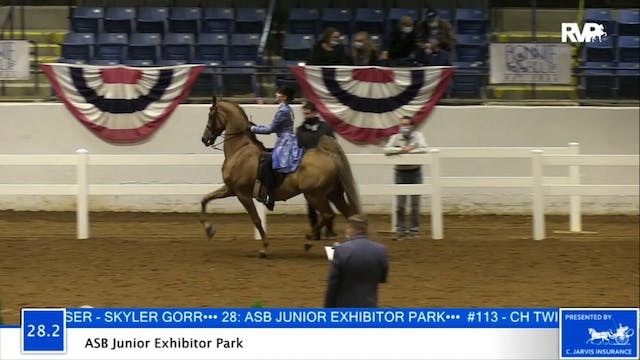 2020 BB - Class 28.2 ASB Junior Exhib...