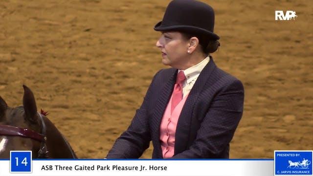 2020 Bonnie Blue Horse Show - Wednesd...