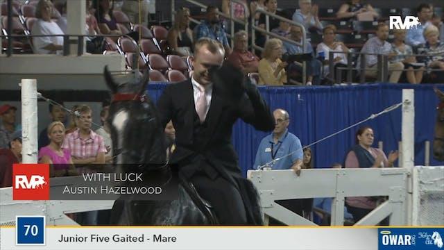 2019 World's Championship Horse Show ...