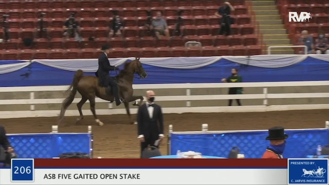 2020 BR - Class 206 ASB Five Gaited Open Stake