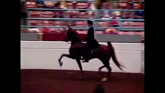 1990 Illinois State Fair - Junior Thr...