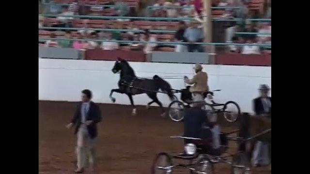 1990 Illinois State Fair - Harness Pony