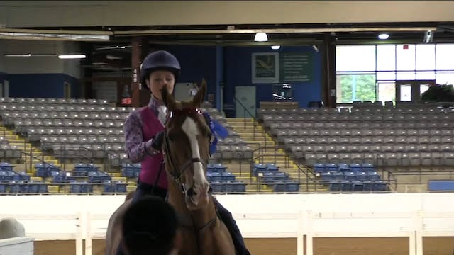 BB17 - Madyson Spradling - Equitation