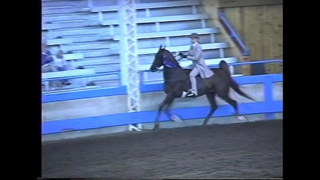 Des Moines Spring Horse Show 1995 - Jr 3 Gaited - Best for Peace at Midnight