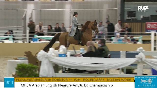 BS21 - Class 151.1 - MHSA Arabian English Pleasure Amateur-Junior Exhibitor Championship