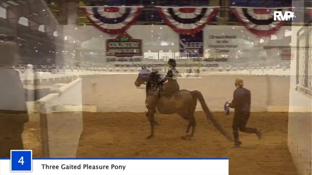 2020 BB - Class 4 Three Gaited Pleasu...