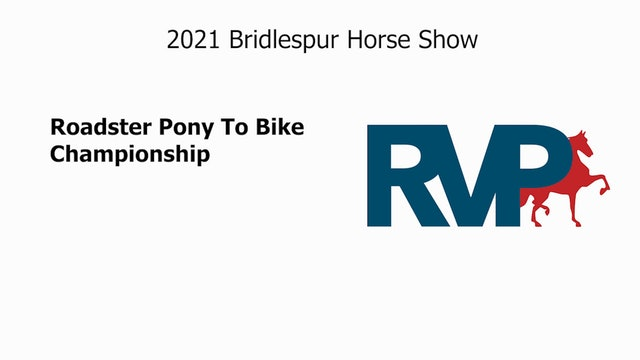 BS21 - Class 155 - Roadster Pony To Bike Championship
