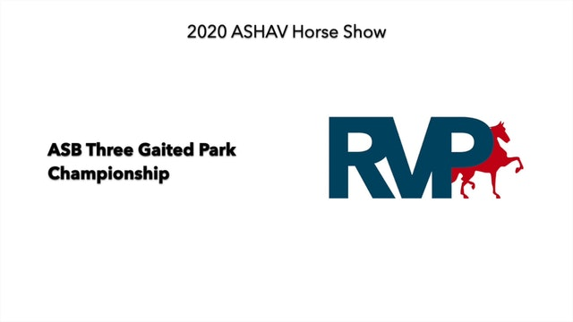 ASHAV 2020 - Class 110 ASB Three Gaited Park Championship
