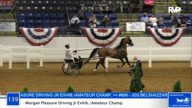 2020 BB - Class 139 Morgan Pleasure Driving Amateur:Junior Exhibitor Championship