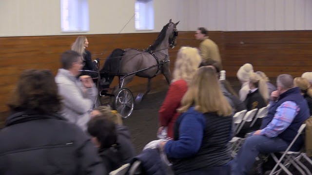 Harness Demonstration - With Johnny J...