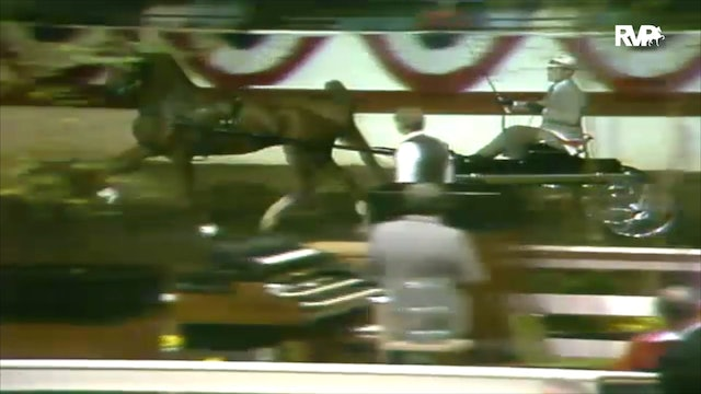 1988 All American Horse Classic - 4 Year Old Sweepstakes