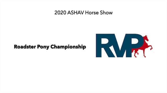 ASHAV 2020 - Class 117 Roadster Pony Championship