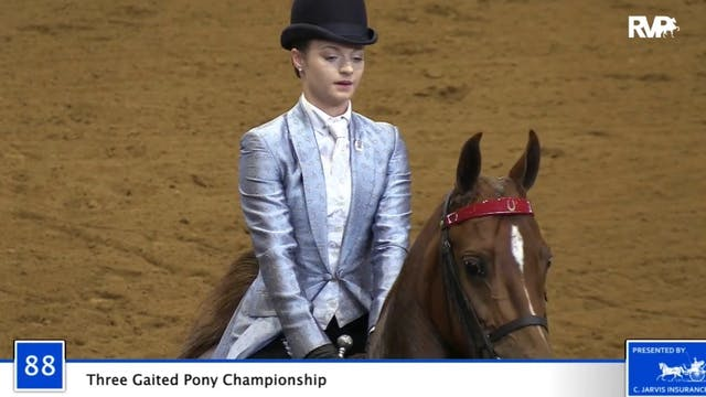 2020 Bonnie Blue Horse Show - Friday ...
