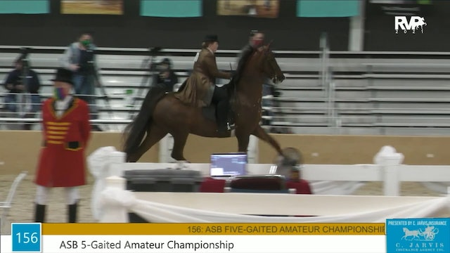 BS21 - Class 156 - ASB Five Gaited Amateur Championship