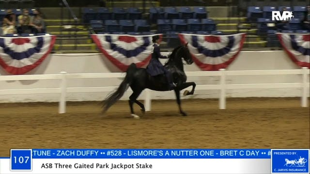 2020 BB - Class 107 ASB Three Gaited ...