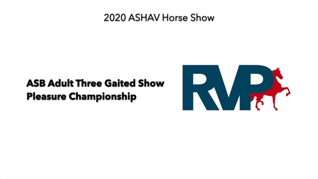 ASHAV 2020 - Class 103 ASB Adult Three Gaited Show Pleasure Championship