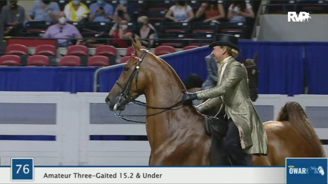 2020 World's Championship Horse Show ...