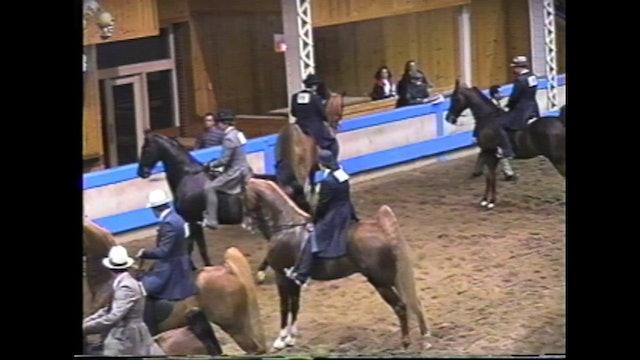 Des Moines Spring Horse Show 1995 - 5 Gaited Open - Courageous Cactus