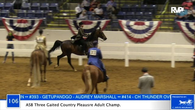 2020 BB - Class 106 ASB Three Gaited ...