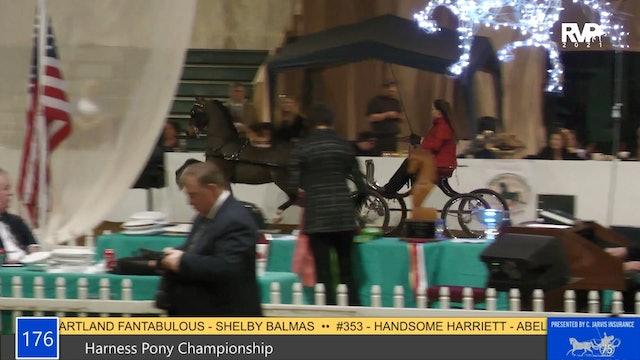GASP21 - Class 176 - Harness Pony Championship
