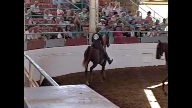 1990 Illinois State Fair - 3 Year Old Park Pleasure