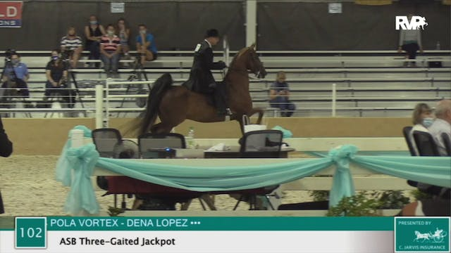 2020 BS - Class 102 ASB Three Gaited ...