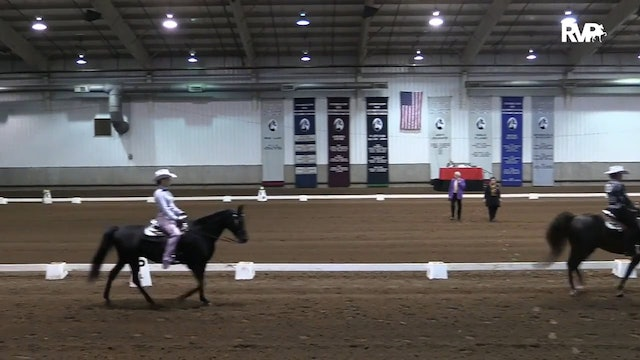2018 MGN - 10/8 Monday Morning - Sport Horse 1