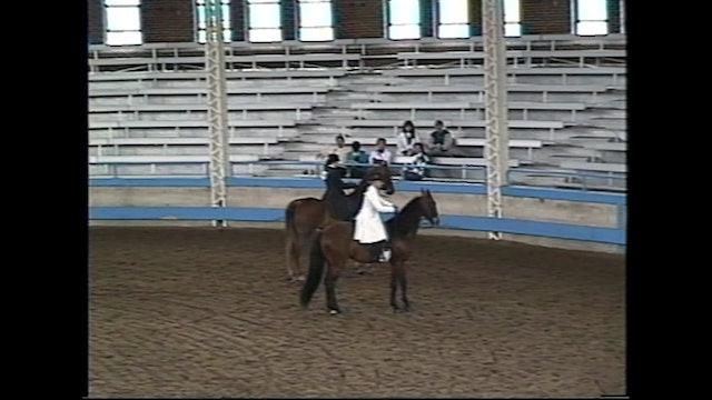 Des Moines Spring Horse Show 1995 - 3 Yr Old Park Pleasure - Prepy