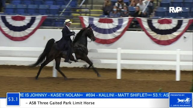 2020 BB - Class 53.1 ASB Three Gaited...