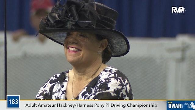 2019 World's Championship Horse Show - Friday Morning