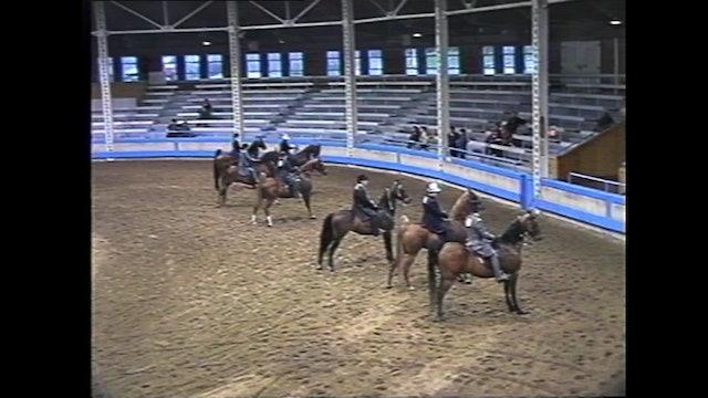 Des Moines Spring Horse Show 1995 - 3 Gaited Park Pleasure - Lady Francesca