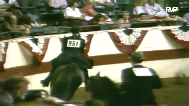 1988 All American Horse Classic Class 197 National Three Year Old Pleasure Prospects