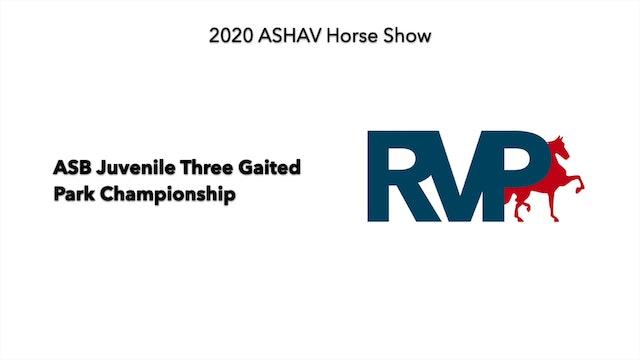 ASHAV 2020 - Class 108 ASB Juvenile Three Gaited Park Championship