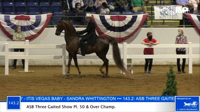 2020 BB - Class 143.2 ASB Three Gaited Show Pleasure 50 & Over Championship