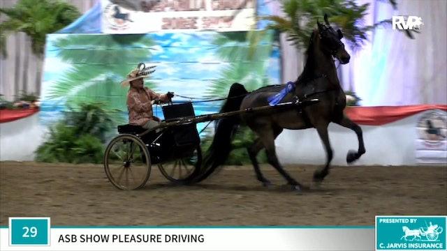 2019 Gasparilla Charity Horse Show - Thursday Evening
